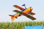Flugtag Nennslingen 2011
